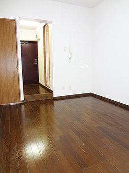 530D41コニームーン(s102-3).jpg
