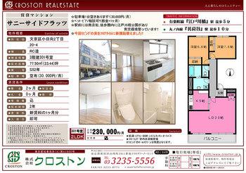 【修正済】530C41サニーサイドフラッツ(301).jpg